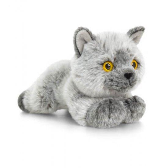 Британска сива късокосместа котка, 30 см