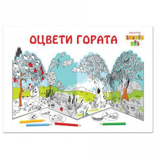 Книжка за оцветяване - Оцвети гората