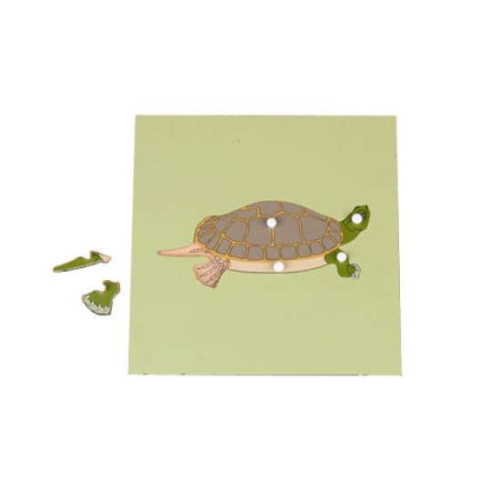 Пъзел костенурка със скелет - Монтесори материали