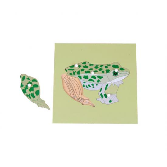 Пъзел жаба със скелет - Монтесори материали